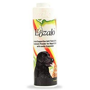 Lozalo Deodorizing Powder, Musk - 150 gm