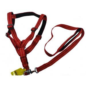 Nylon Printed Adjustable Harness and Leash Set for Medium to Larger Dogs, Large