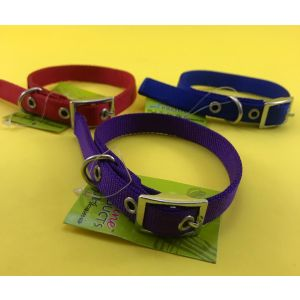 Canine Nylon Collar for Dogs and Cats, Small
