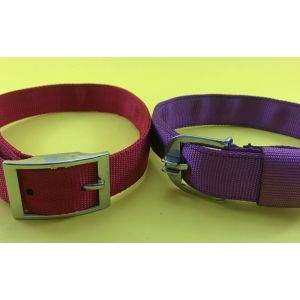 Canine Nylon Collar for Dogs, X-Large