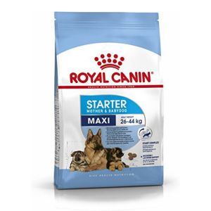 Royal Canin Maxi Starter, Dry Dog Food